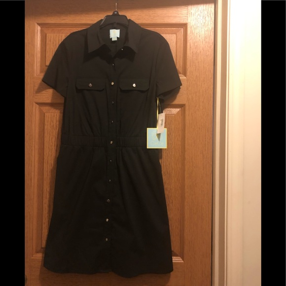 CeCe Dresses & Skirts - Black button up the front dress,  new